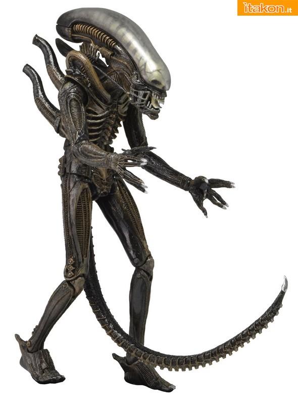 [NECA] Series 4 - Aliens: Ellen Ripley e Dallas Arthur 51393_1979_-Alien