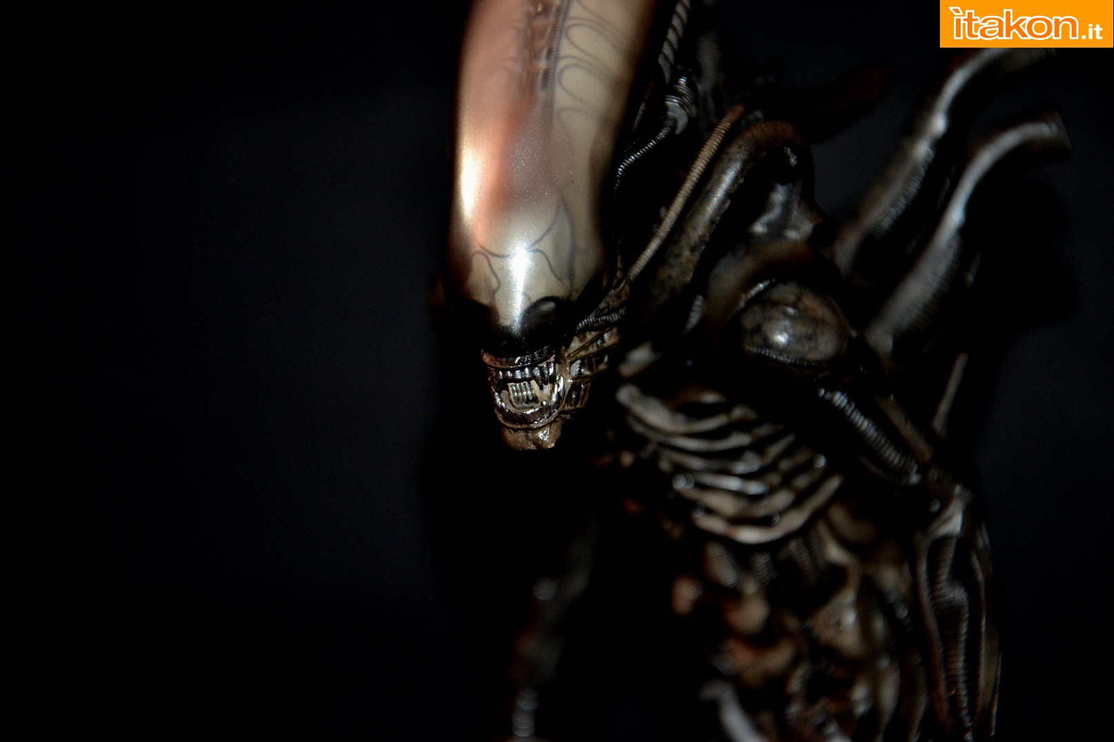 Link a alien-big-chap-recensione-34