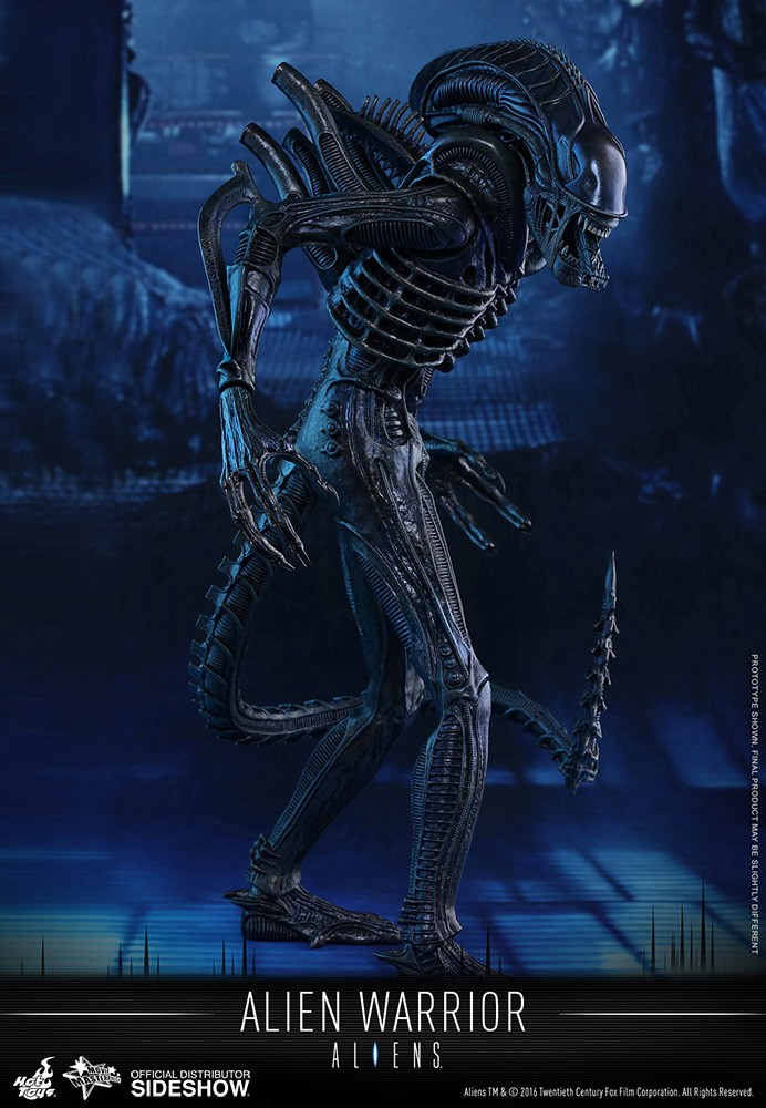 hot-toys-alien-warrior-12-action-figure-acf-11784821459868355_jpg_800x0_upscale_q85