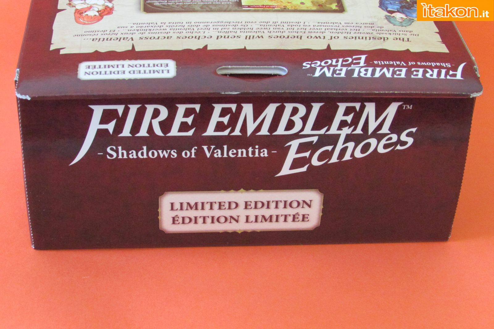 Link a Fire Emblem Echoes Shadow of Valentia Limited Edition Itakon.it 19