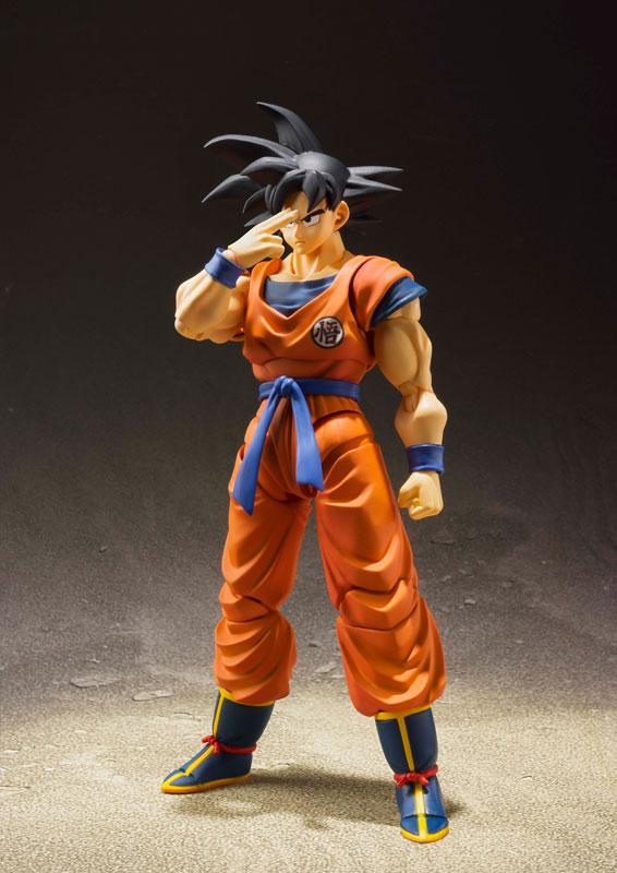 Link a Dragon Ball Z Son Goku Saiyan Grown on Earth S.H. Figuarts Bandai Itakon.it 2