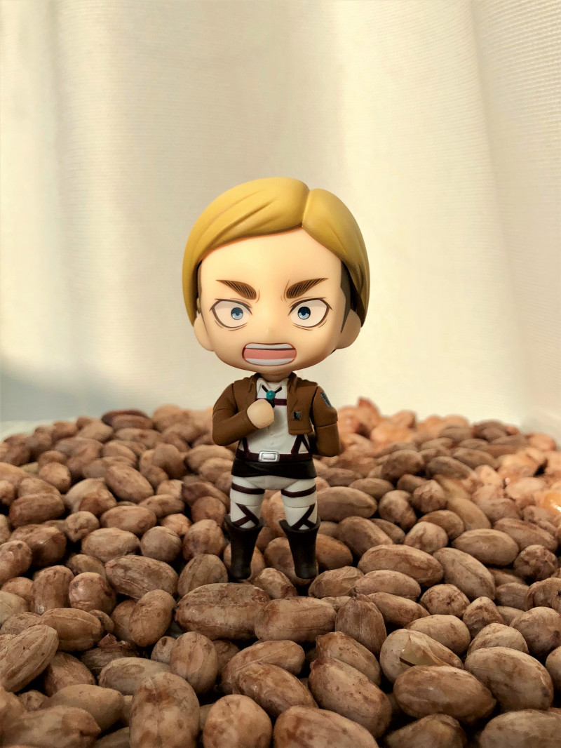 Link a Nendoroid Erwin Smith boxed 08