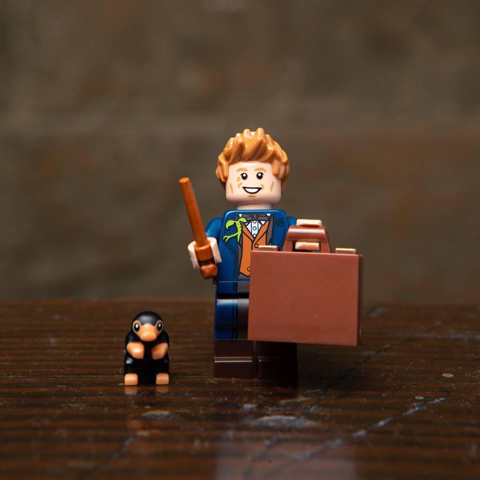 Link a Harry Potter Minifigure_18