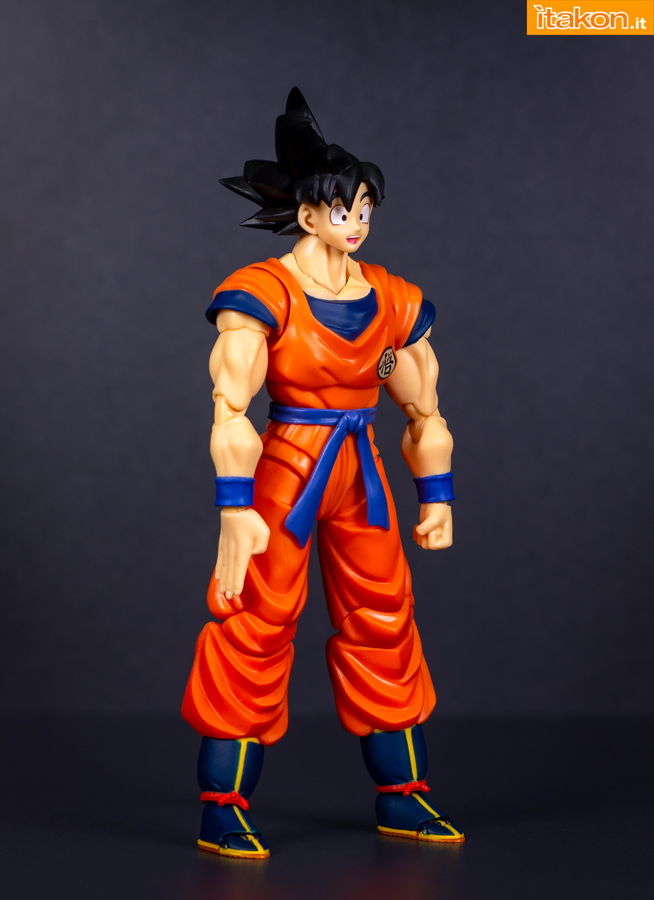 Link a Bandai Son Goku recensione-18
