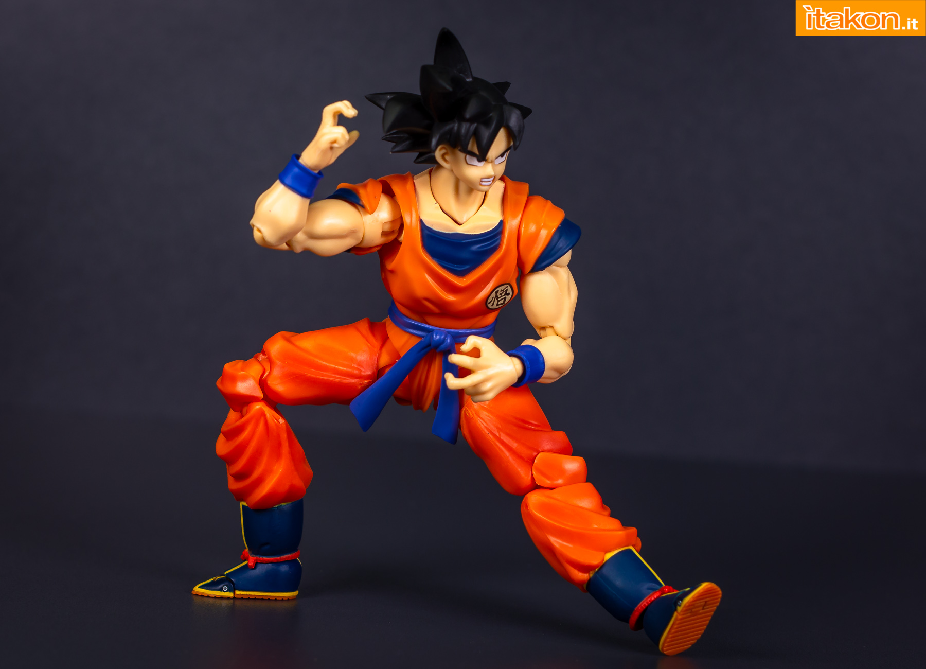 Link a Bandai Son Goku recensione-30