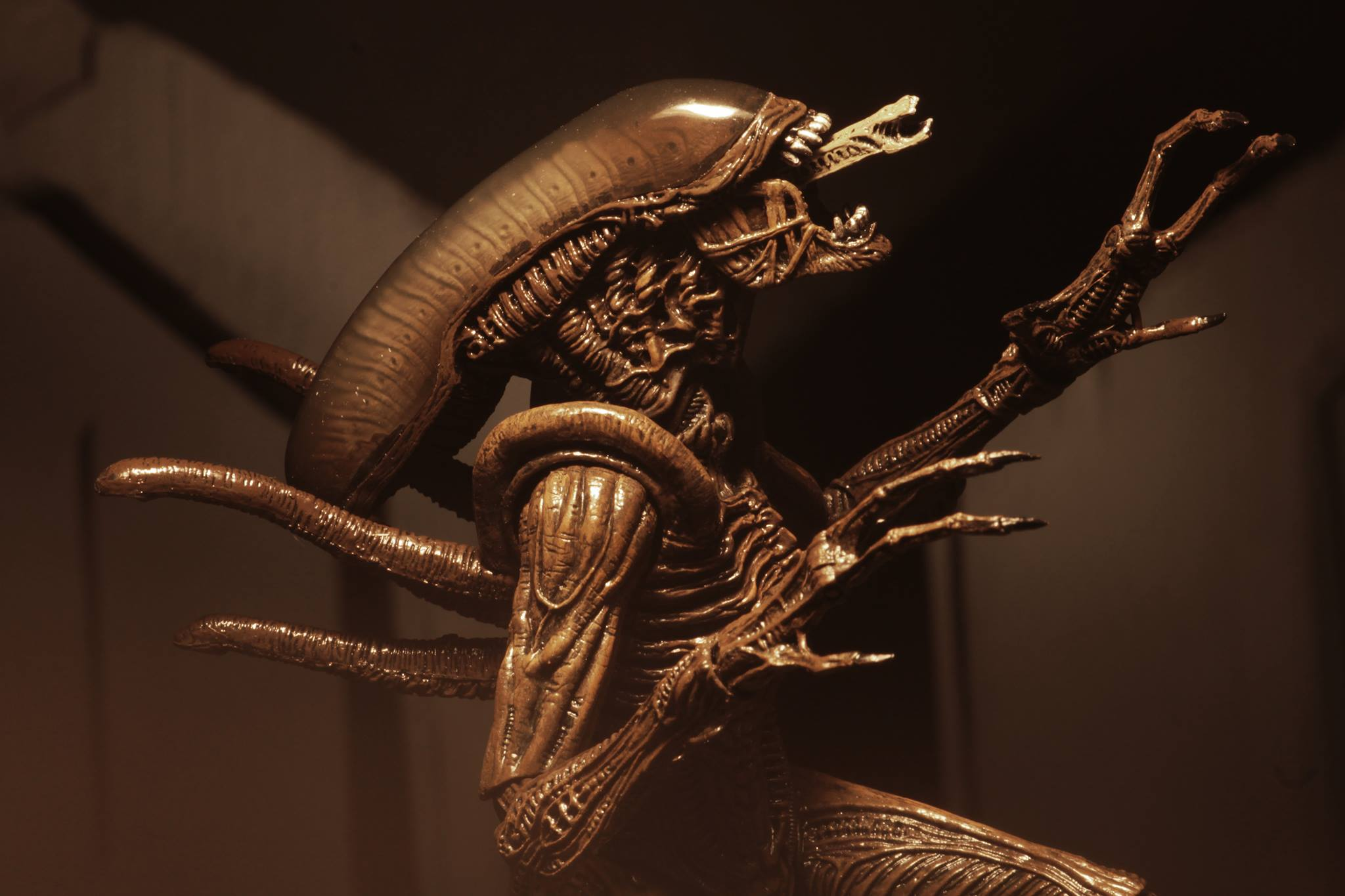 Link a Aliens-Series-14-NECA-017