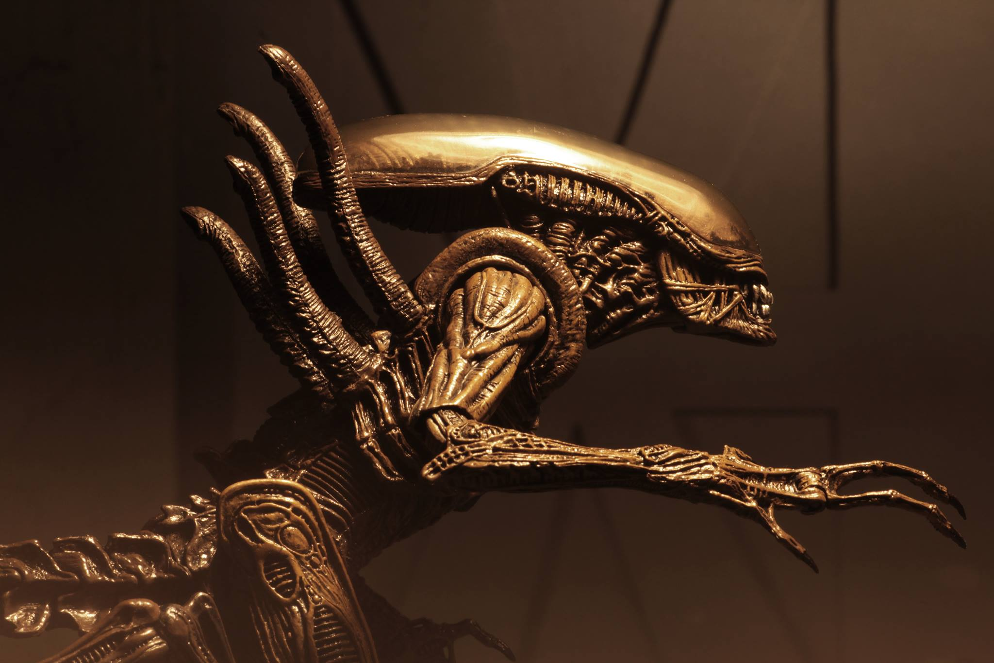 Link a Aliens-Series-14-NECA-019