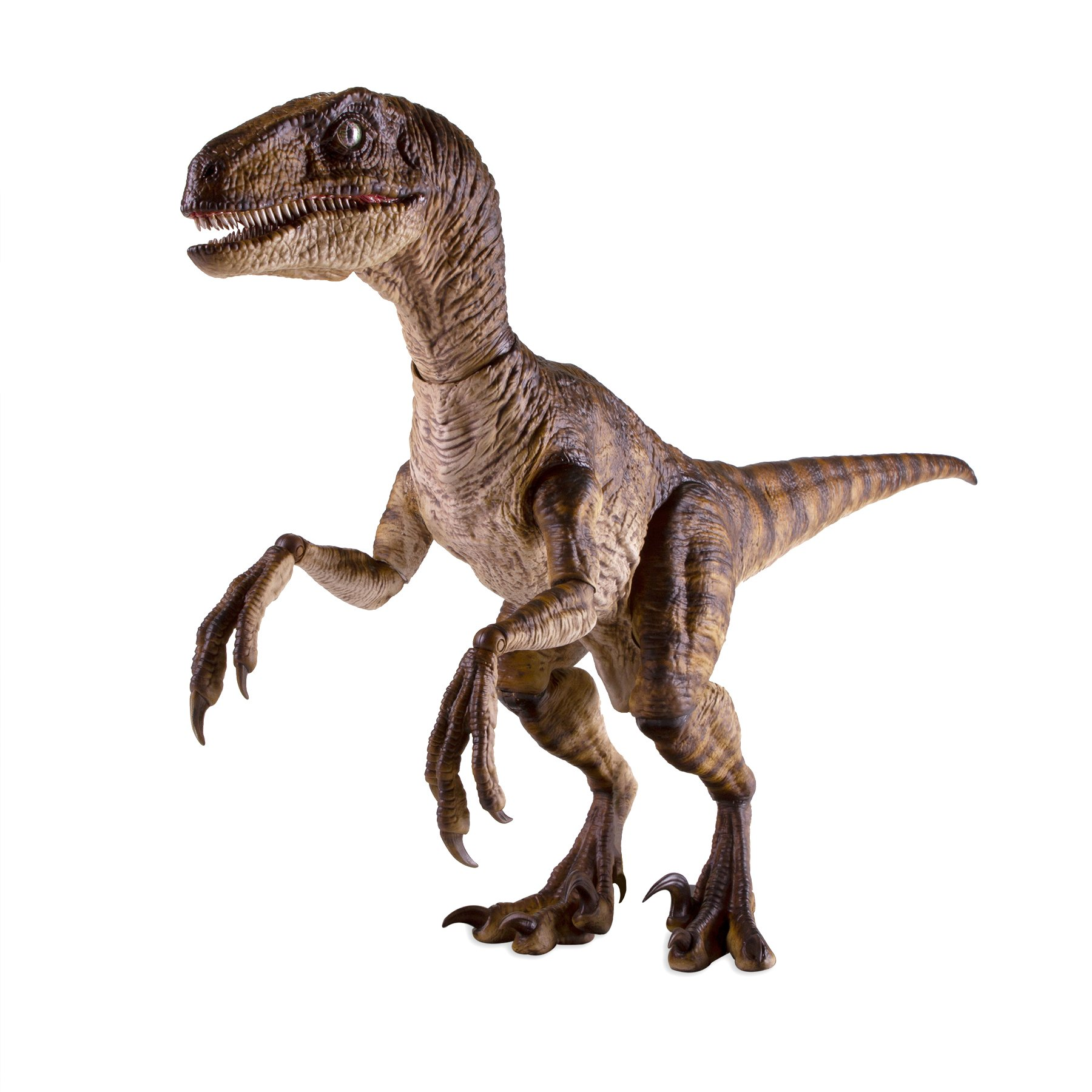 Link a Chronicle-Jurassic-Park-Raptor-010