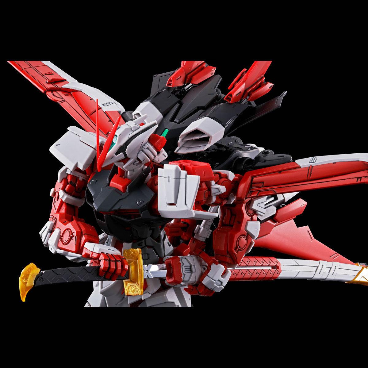 Link a Gundam_astray_flight_unit_Bandai_Master_Grade-2