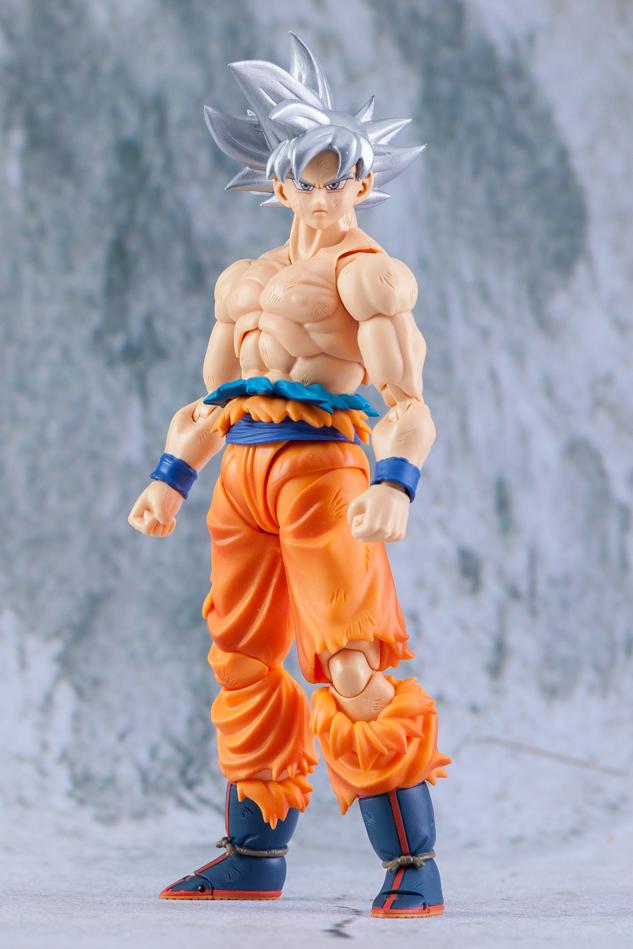 Link a Son_Goku-5167
