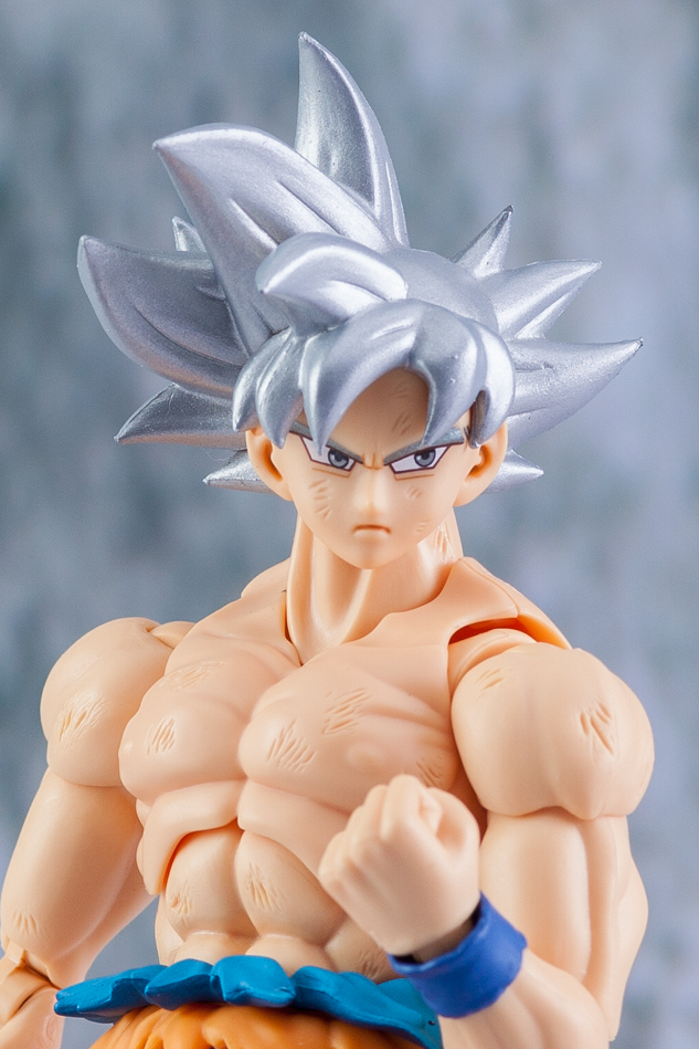 Link a Son_Goku-5169