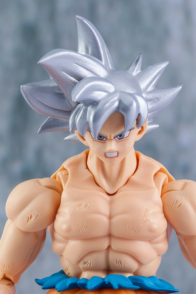 Link a Son_Goku-5171