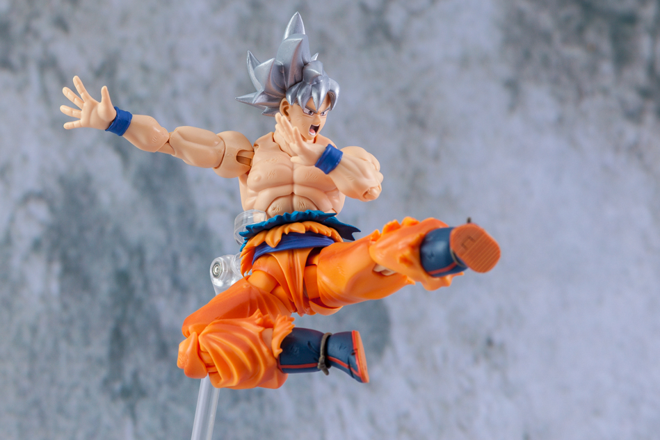 Link a Son_Goku-5179