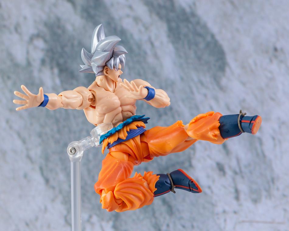 Link a Son_Goku-5180
