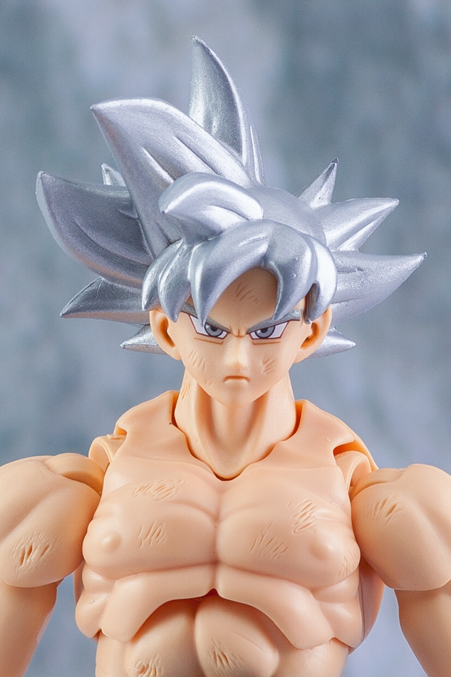 Link a Son_Goku-5188