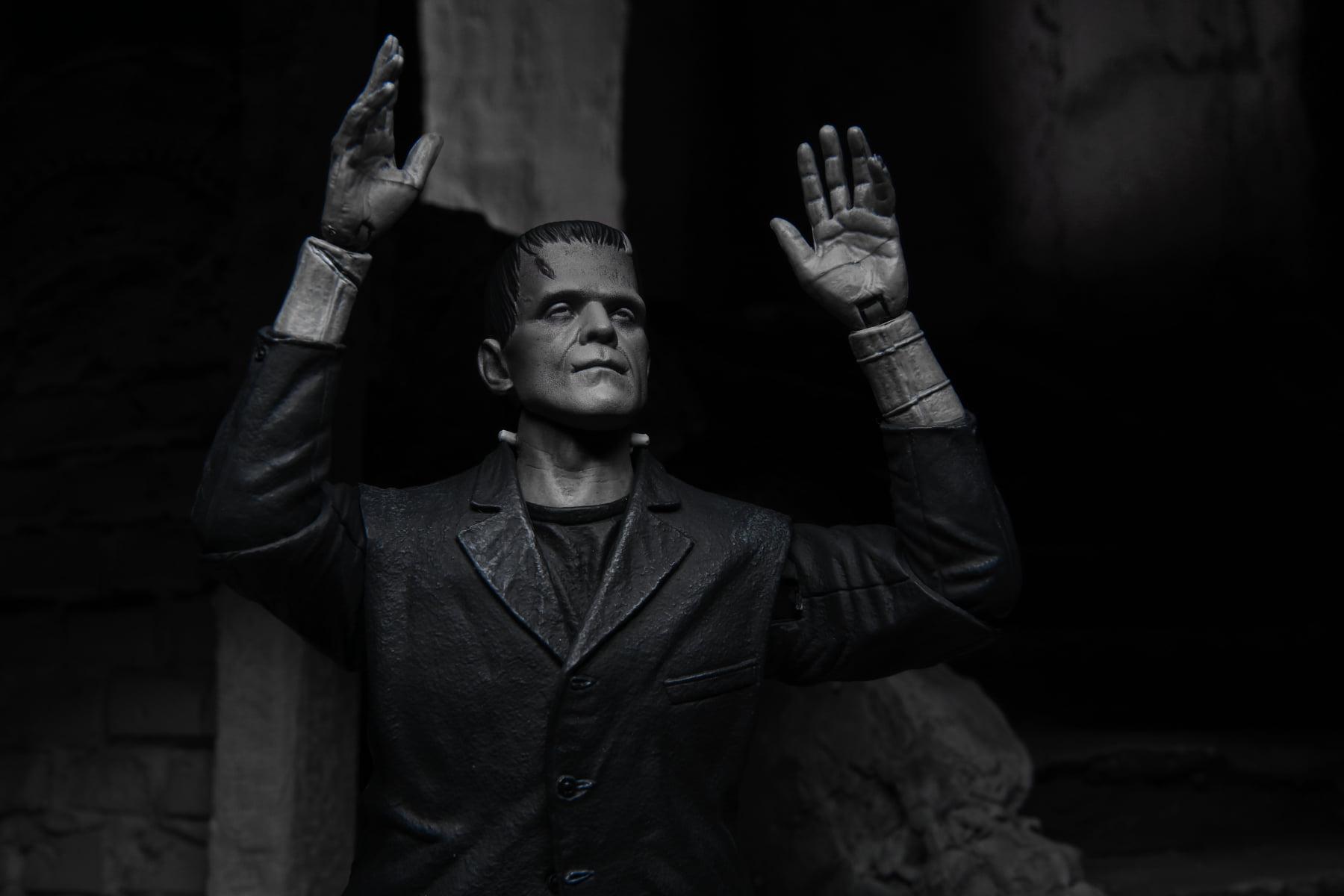 Link a NECA-Frankenstein-Monster-Universal- (6)